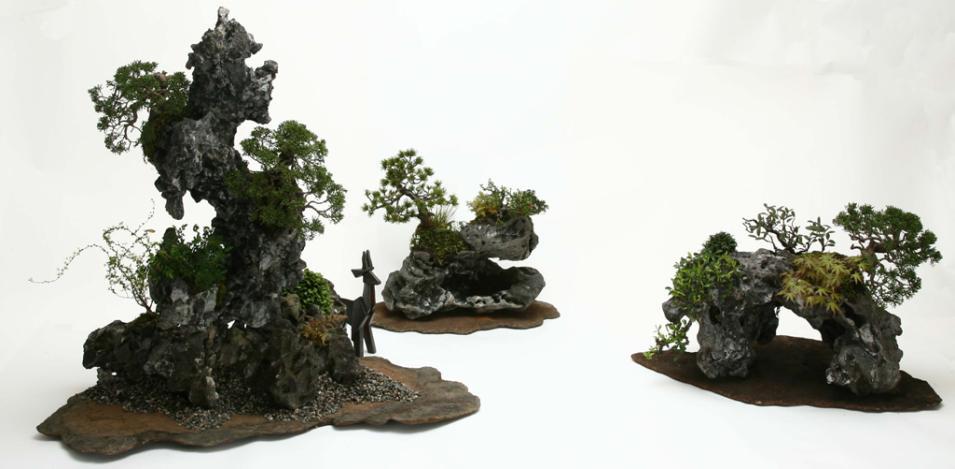 Gallery Bonsai Master Masashi Hirao 盆栽師 平尾成志